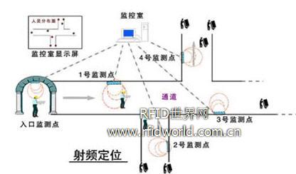 图4 网络结构示意图