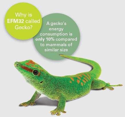 总之,efm32 mcu就像这可爱的小壁虎一样,在微控制器领域,堪称省电的