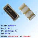供应CSTCR4M19G53