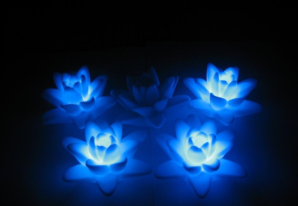 节庆莲花,莲花小夜灯,发光莲花